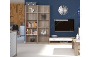 Что выбрать для дома: книжный стеллаж или шкаф?