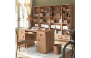 Книжный шкаф и особенности его выбора